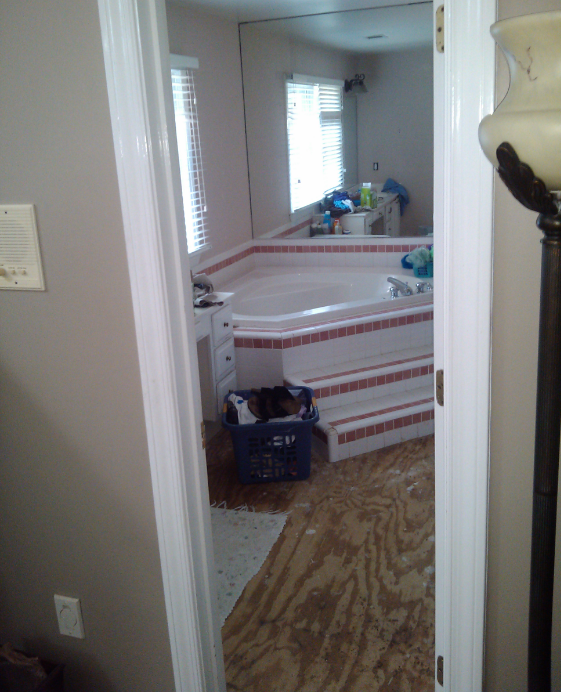 bathroom-beforepic