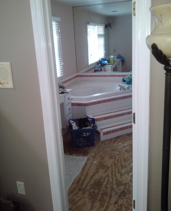 bathroom-beforepic